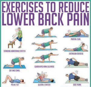 exercises to ease lower back pain
