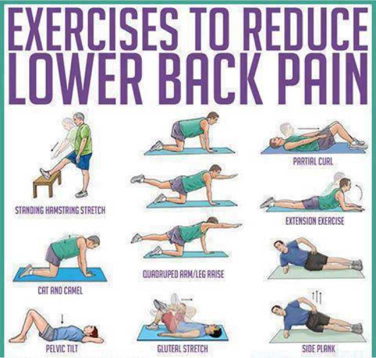 Lower Back Exercises Ease Your Lower Back Pain